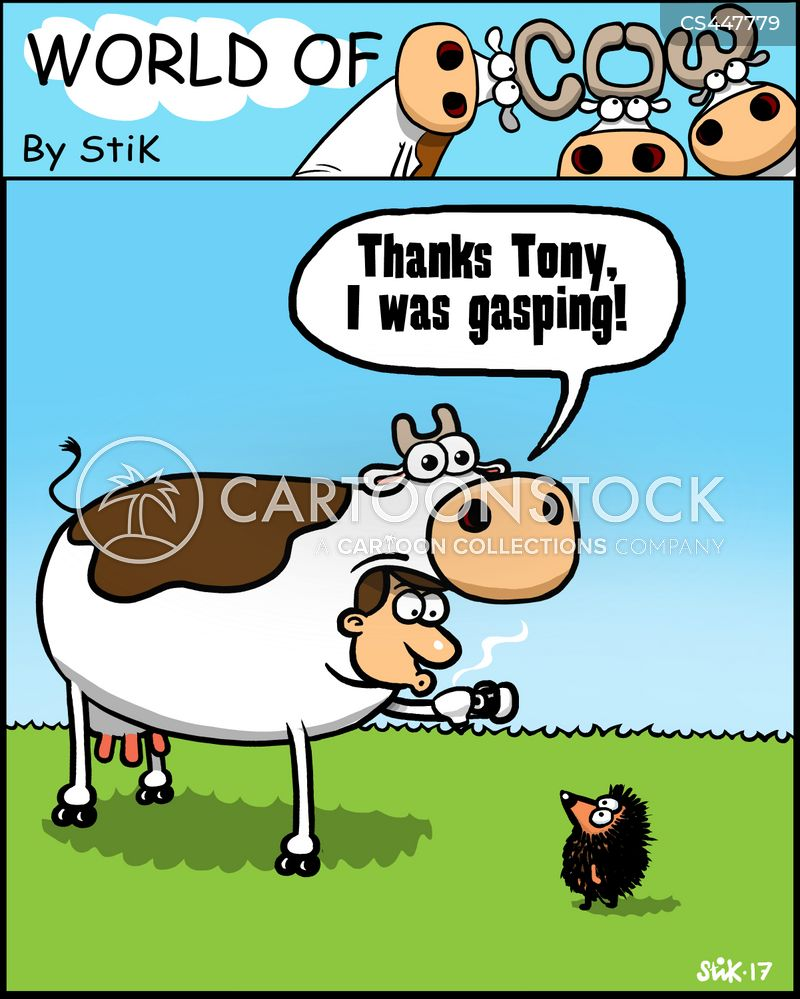 cow costumes cartoon