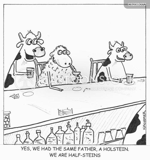 steers cartoon
