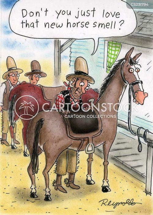 new horse cartoon