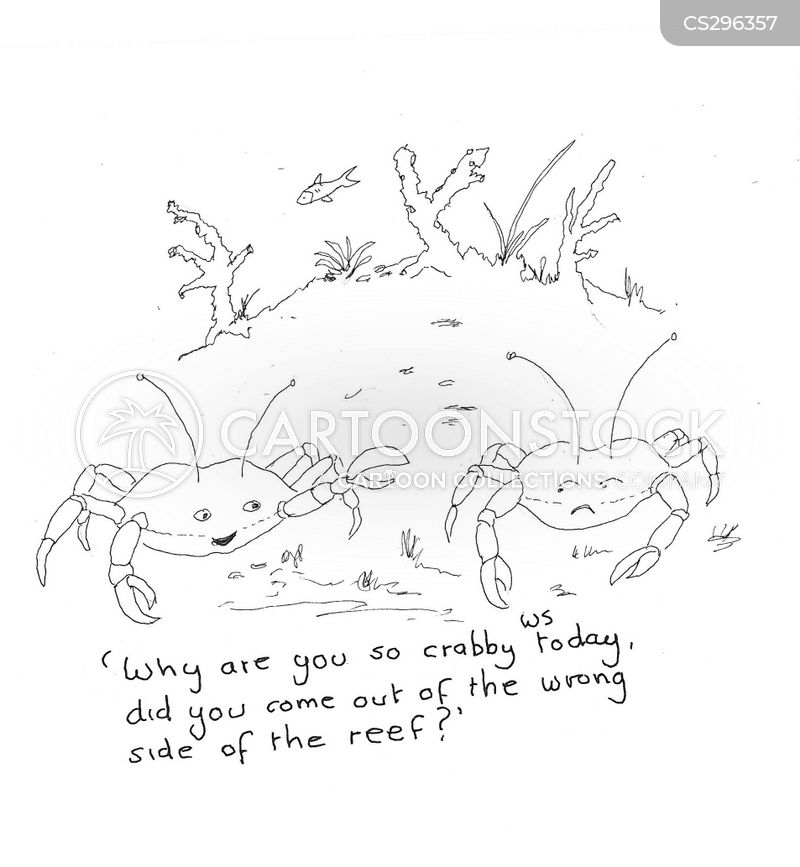 reefs cartoon