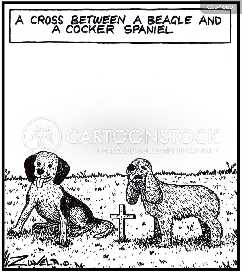 beagle cartoon
