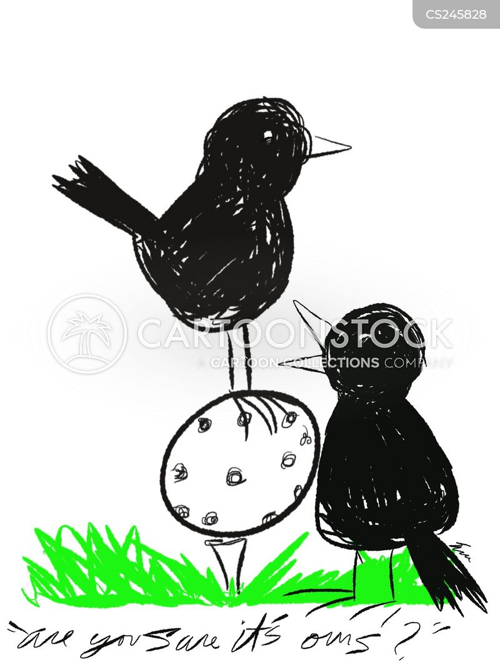 cuckoos cartoon