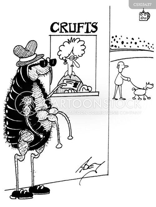 crufts cartoon