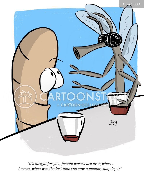 crane fly cartoon