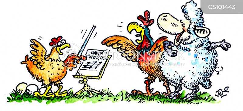 Dawn Chorus Cartoons And Comics Funny Pictures From