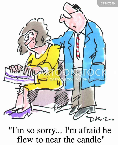 misadventure cartoon