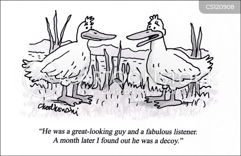 duck decoys cartoon