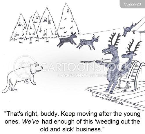 mountain lion cartoon