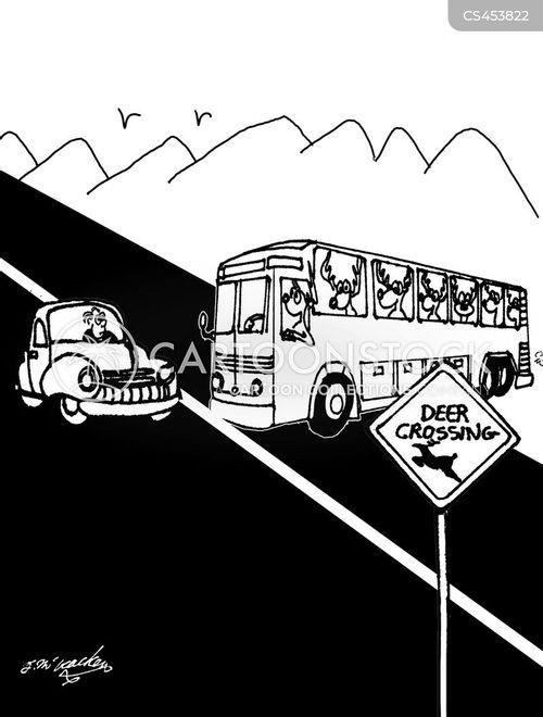bus drivers cartoon