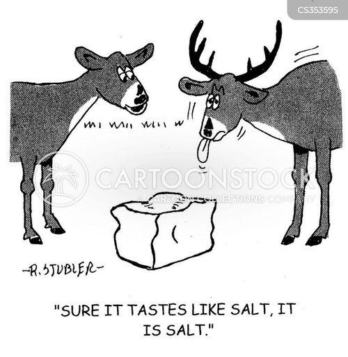 salt licks cartoon