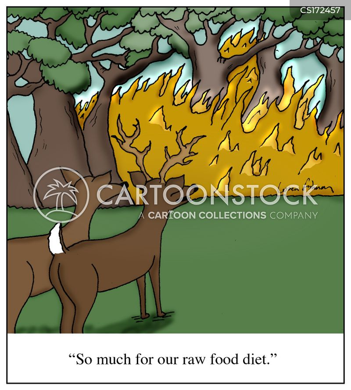 deers cartoon