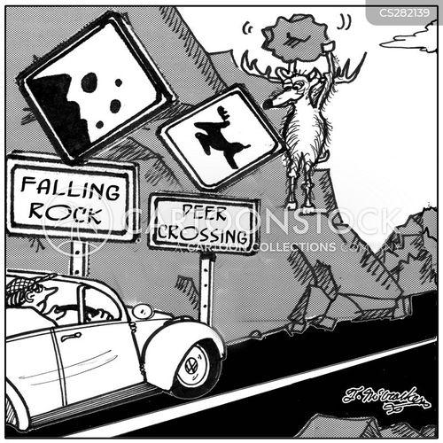 deer crossings cartoon