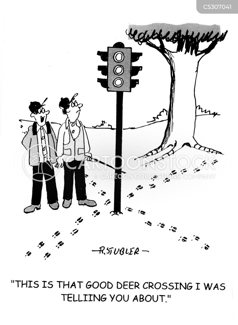 cross road cartoon