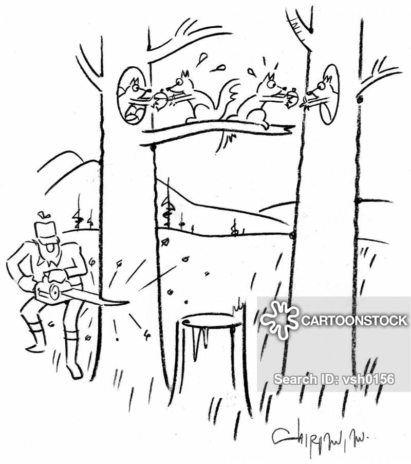 acorn cartoon