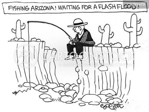 arizona desert cartoon