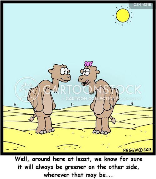 desert animals cartoon