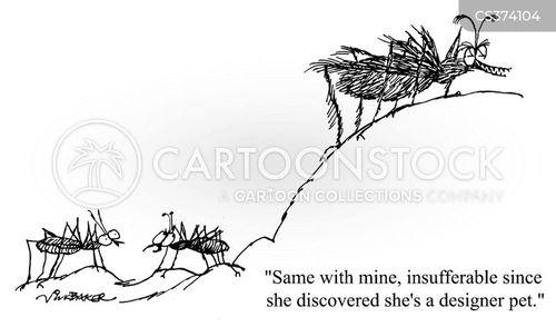 insufferable cartoon