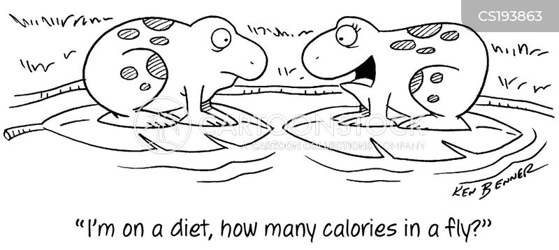 calorie counting cartoon