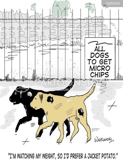 microchips cartoon
