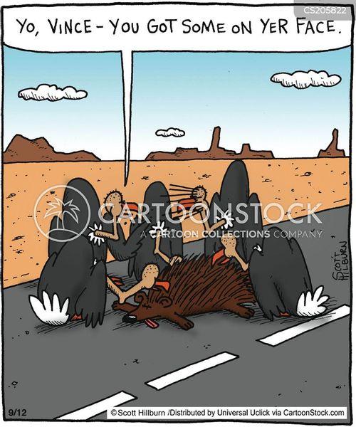 road-kill cartoon