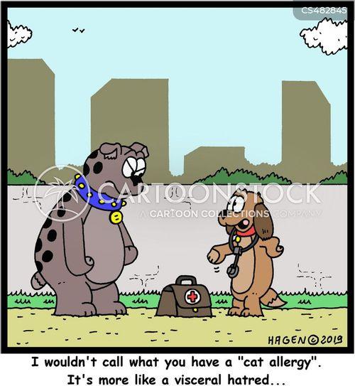 cat allergies cartoon