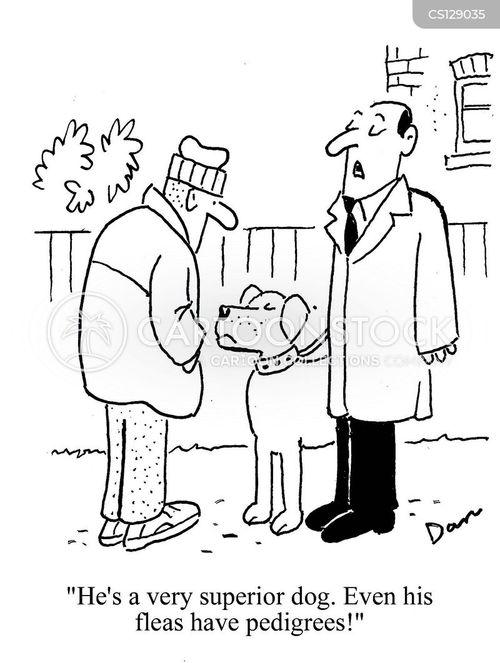 animal breeding cartoon