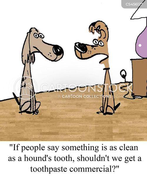hounds cartoon