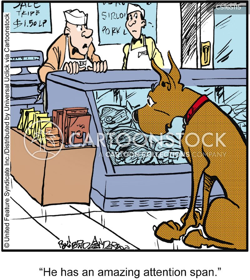 marmaduke cartoon