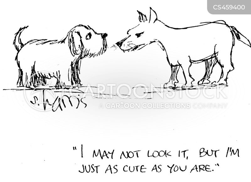 Small Dogs cartoons, Small Dogs cartoon, funny, Small Dogs picture, Small Dogs pictures, Small Dogs image, Small Dogs images, Small Dogs illustration, Small Dogs illustrations