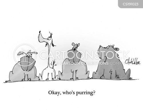 purring cartoon