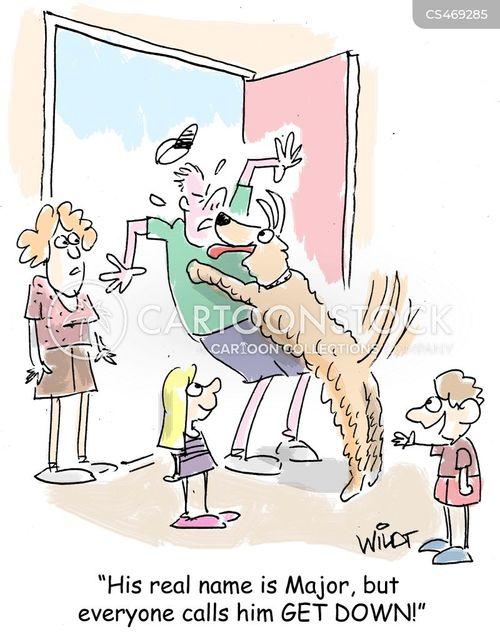 housetrained cartoon