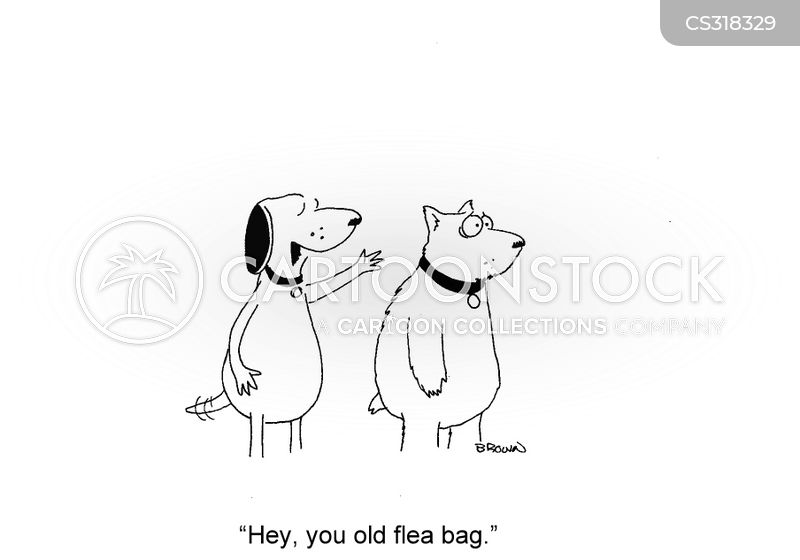 flea bite cartoon