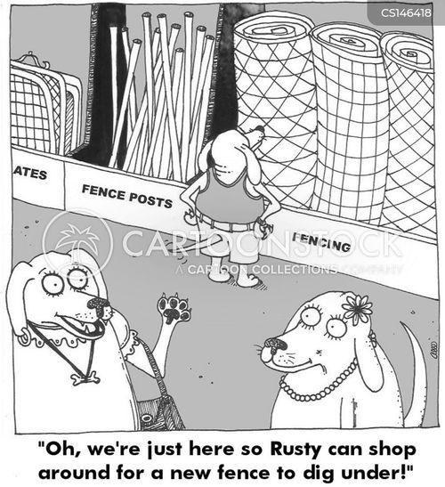 hardware shop cartoon