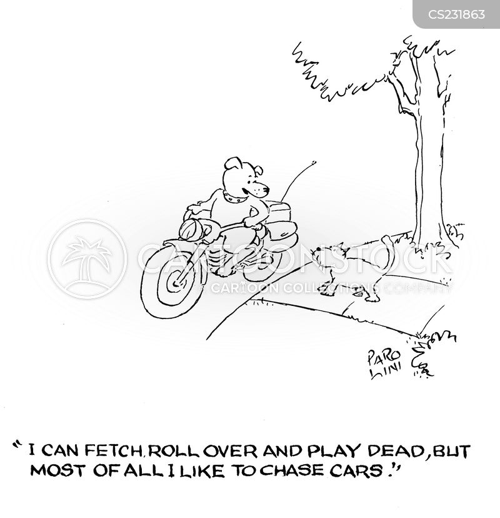 roll-over cartoon