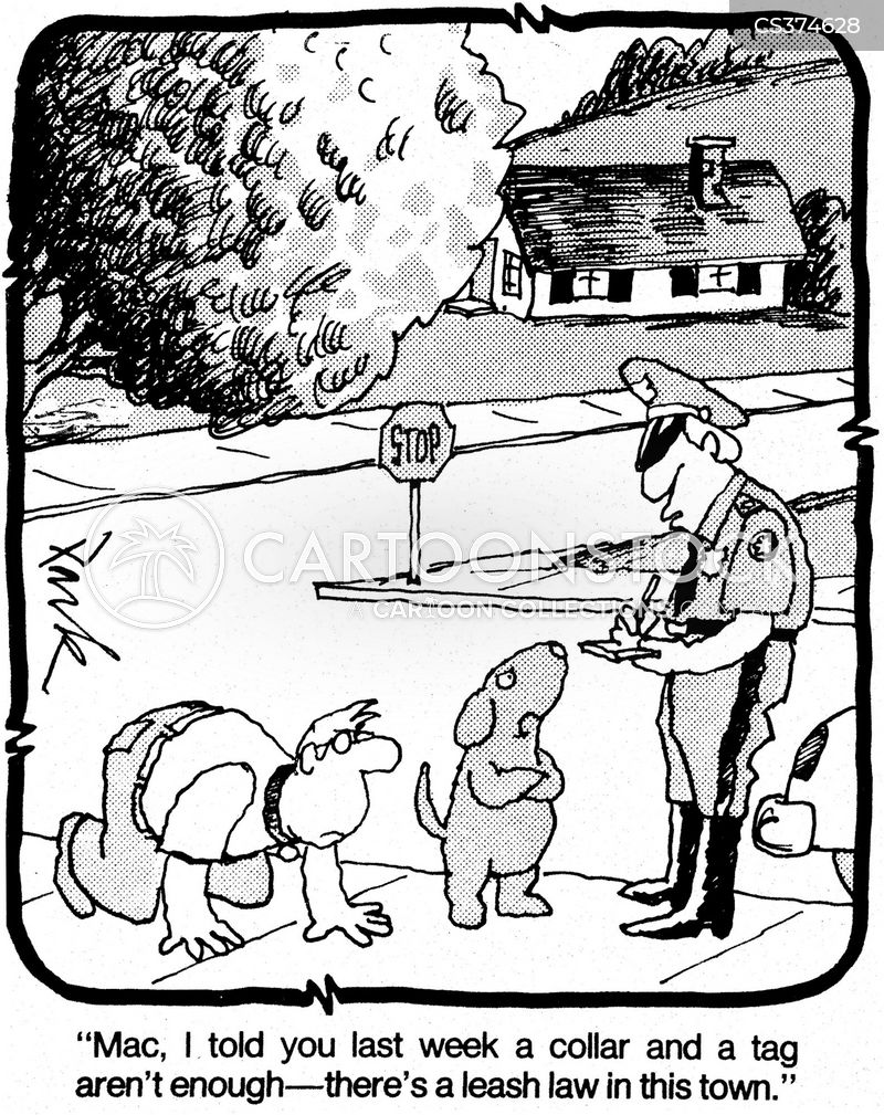 leash law cartoon