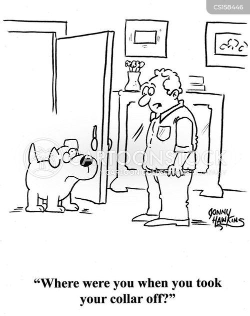 dog accessories cartoon