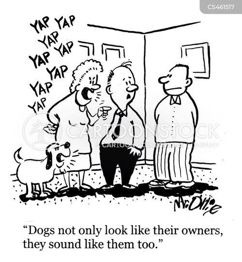 yappy dogs cartoon