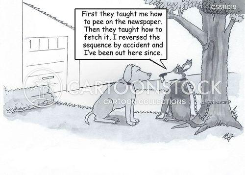 fetch the paper cartoon