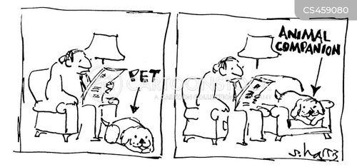 animal companion cartoon