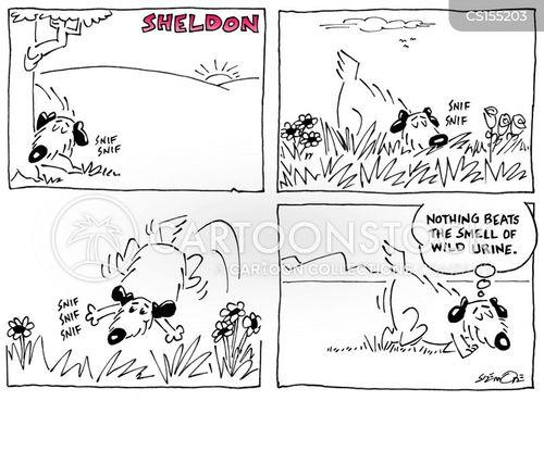 favourite smells cartoon