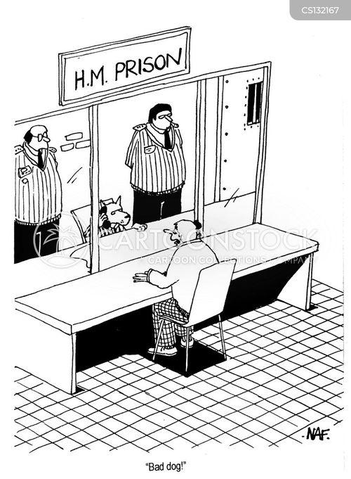 visitation rights cartoon