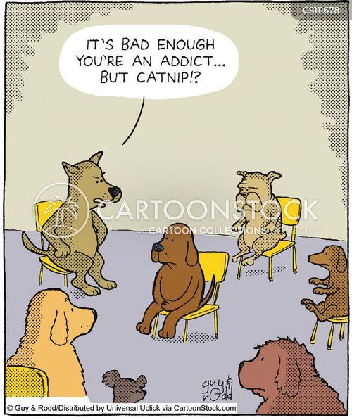 catnip cartoon