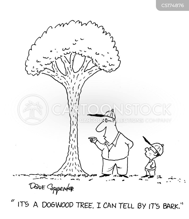 dogwood cartoon