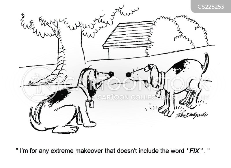 extreme makeover cartoon