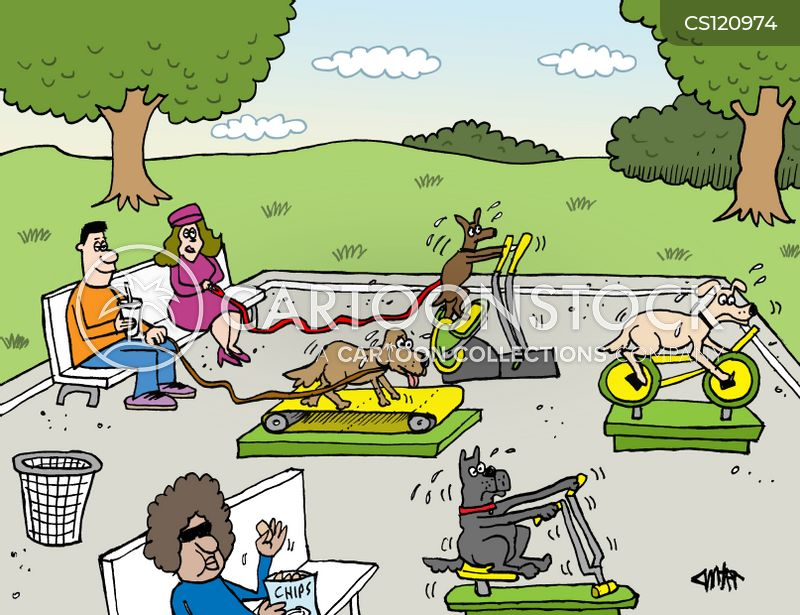 cardio cartoon