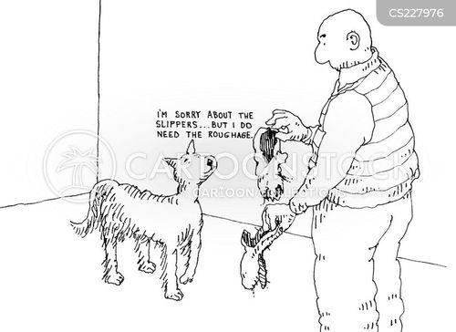 roughage cartoon
