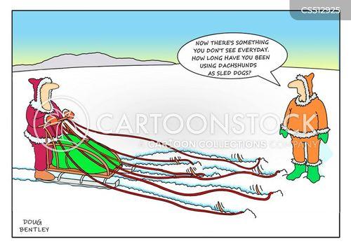 dog sled cartoon