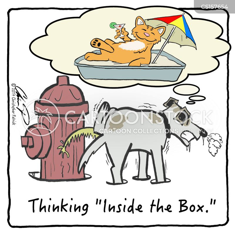 outside the box cartoon