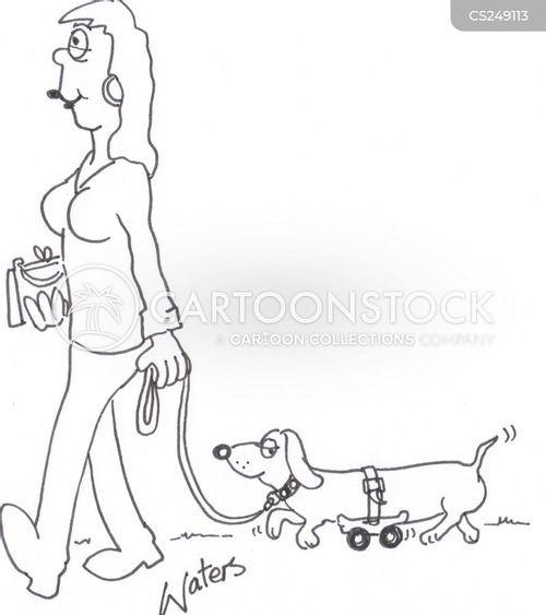 daschund cartoon