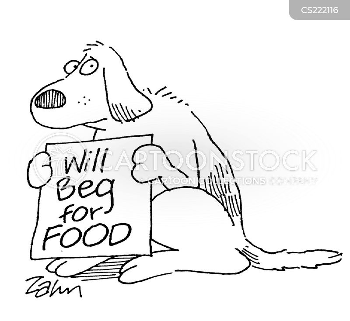 street dog cartoon